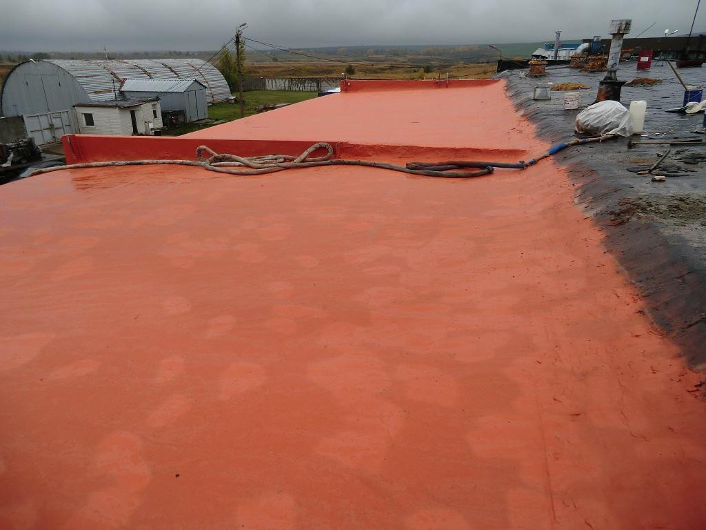 Крыша покрытая полимочевиной